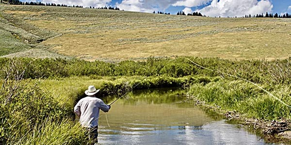 fort-smith-montana-fly-fishing-guide