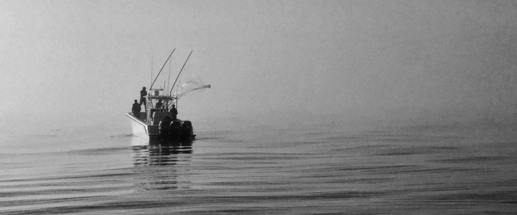 Deep Sea Fly Fishing